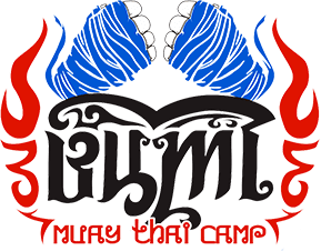 logo about bumi muay thai