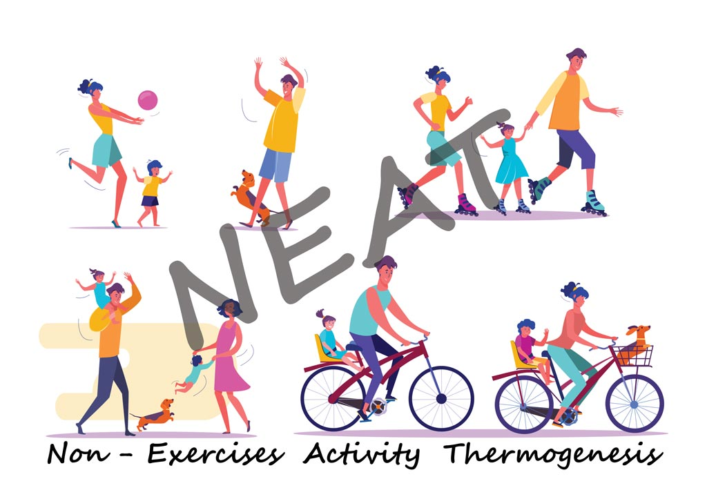 neat - non-exercises activity thermogenesis
